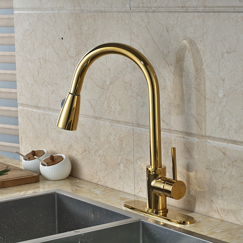 Columbine gold finish kitchen sink faucet with pull out for Bathroom faucet finishes