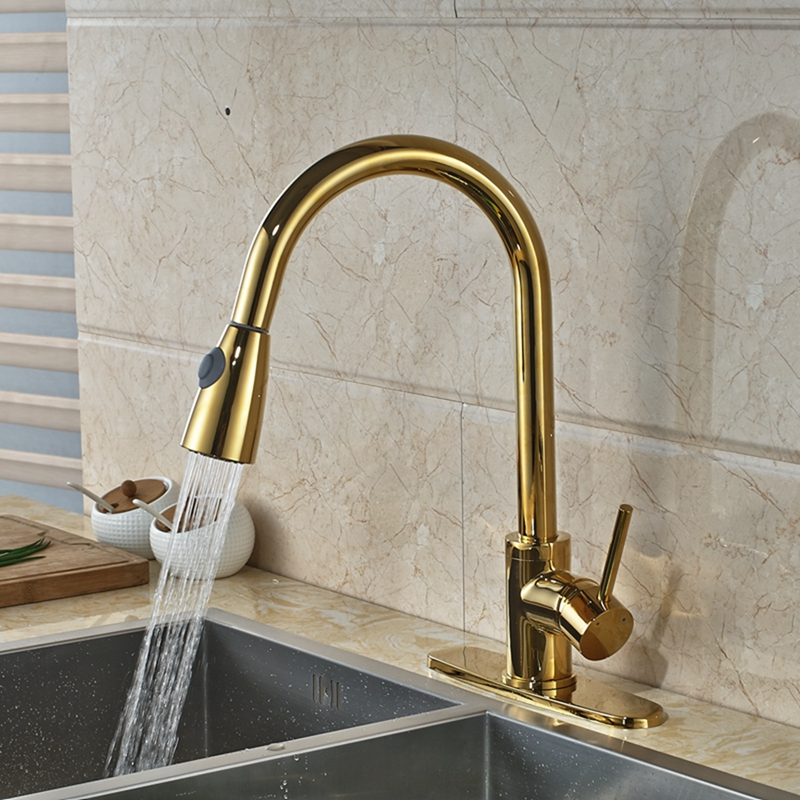 Gold Kitchen Faucet: Columbine Gold Finish Kitchen Sink Faucet With Pull Out