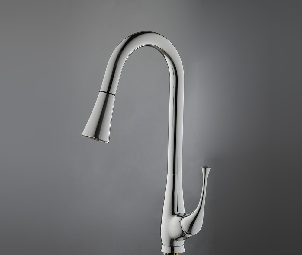 Passaic chrome finish kitchen sink faucet with pull out for Kitchen faucet finishes